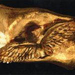 Le-Soleil-en-face-43x36x67-Multimateriaux-Feuilles-d'or