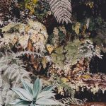 Rocaille-65x50-Aquarelle