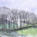 Allée-des-chenes-en-Creuse-15x24-Aquarelle-